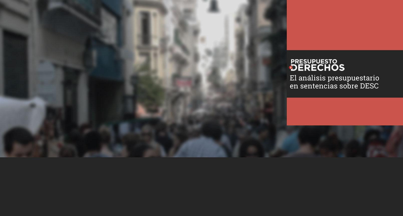 Sitio web sobre derechos sociales, litigio y presupuesto